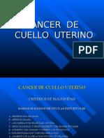 13. Cancer de Utero