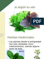 plantassegnsuuso3-110531122923-phpapp01.pptx