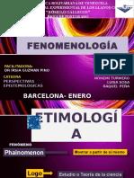 PERSPECTIVAS EPISTEMOLÓGICAS FENOMENOLOGÍA