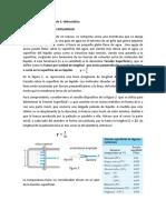 Tensión-Superficial.-Capilaridad.pdf