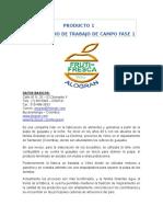 P1CuestionariodeTrabajodeCampoFase1
