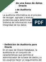 Auditoría de Una Base de Datos Oracle