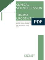 CSS Trauma Urogenital