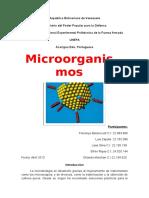 Microorganismos Completo