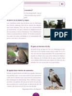 eval_inici_476941.pdf