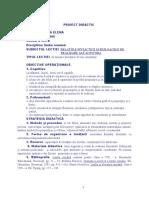 proiect didactic, 8, relatii sintactice+ raporturi