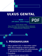 154397723-Diagnosis-Ulkus-Genital.ppt