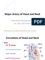 Arteries and Vein of Head and Neck