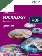 as sociology ecw comp 1