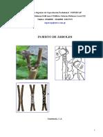 Reproduccion asexual en plantas injerto capilar