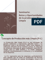 P+L Induccion Gneral