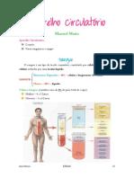 Aparelho Circulatório