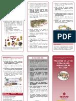TRIPTICO FIRMEEEEEEEEEEEE.pdf