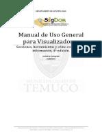 Manual Visualizador