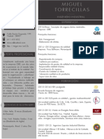 CV Miguel Torrecillas Lacave_(1)