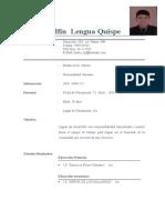 Curriculum Vitar Jhulio.docx
