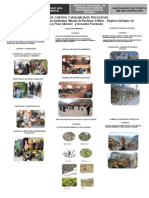 Poster Pcv Piscacucho
