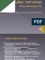 1 Clase- Impulso Nervioso