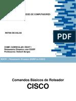 Aula  Roteamento Dinamico Cisco.pdf