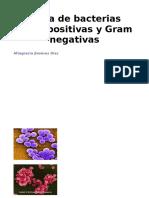 Oktabladebacteriasgrampositivasynegativasreviarparacursovirtual 141028073741 Conversion Gate01