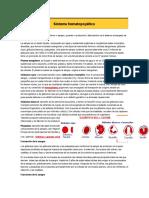 Sistema hematopoyético.docx
