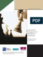 CIMA Mag Financial Risk Jan09