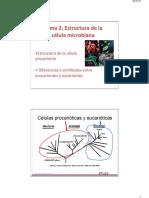 Estructura de Células Procariontes