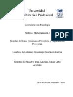 Constancia y Organización Perceptual
