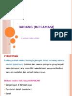 Radang (Inflamasi).pptx