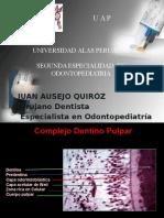Dr Ausejo, Proteccion Dentino Pulpar