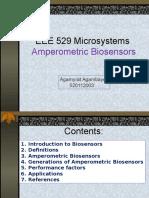 Amperometric Biosensors (2)