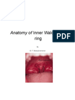 Waldayer's Ring anatomy