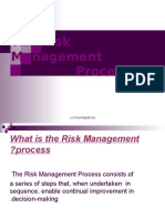 Risk Managment Process