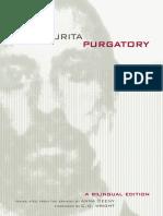 Raul Zurita - Purgatory