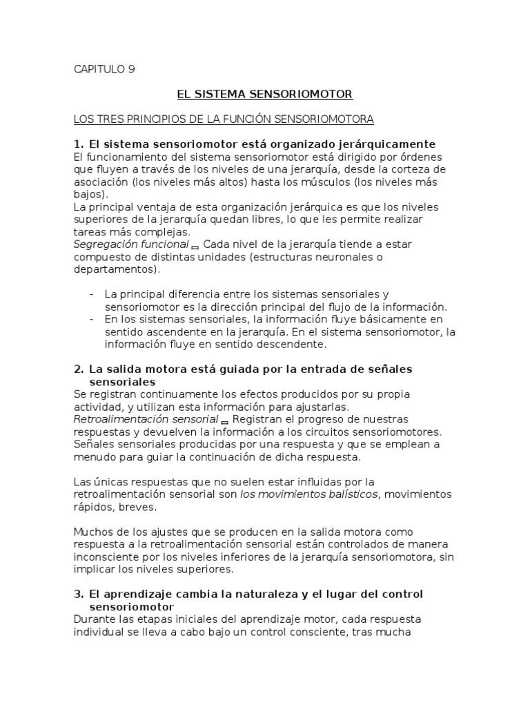 Contemporáneo Anatomía Y La Fisiología De Libro De Respuestas Para ...