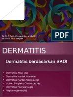 17. Dermatitis 2015