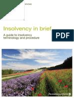 insolvency .pdf