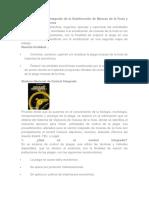 Unidad de Control Integrado de La Subdirección de Moscas de La Fruta y Proyectos Fitosanitarios