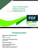modulo organizacional.pptx