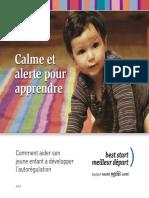 BSRC Calme Et Alerte Guide Final