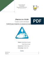 1.-Proyecto-Internado