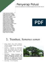 Pohon Penyerap Polusi (LPG)