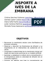 TRANSPORTE A TRAVÉS DE LA MEMBRANA.pptx