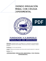 Trabajo Cirugia Experimental - Para Mesclagem