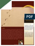 18112010-soifdeauoudecoca.pdf