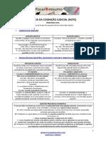 foca-no-resumo-teoria-da-cognic3a7c3a3o-judicial-ncpc.pdf