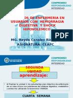 Clase 4 Cuidado en Problemas Con HDA y Shock 153 0