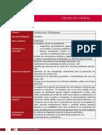 Proyecto..pdf