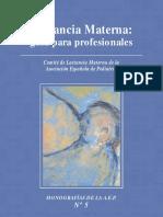 Guia Lactancia Materna
