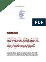 22028497-Uzgoj-Paprike-u-Plasteniku.doc